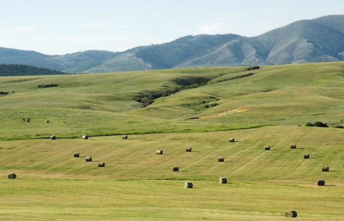Jeffery Ranch