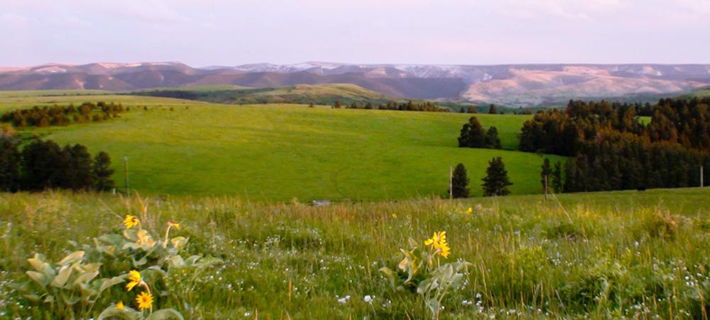 Castle Butte Ranch Feature
