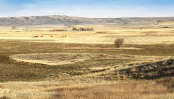 Judith-Basin-Farmland-Feature