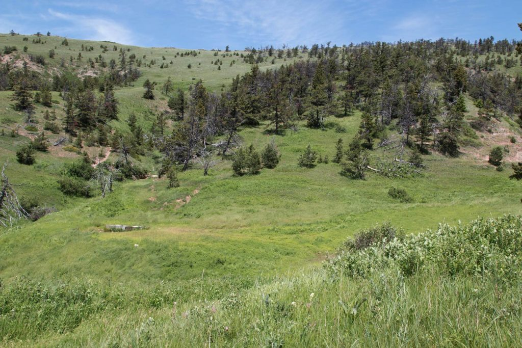Mile High Ranch 03