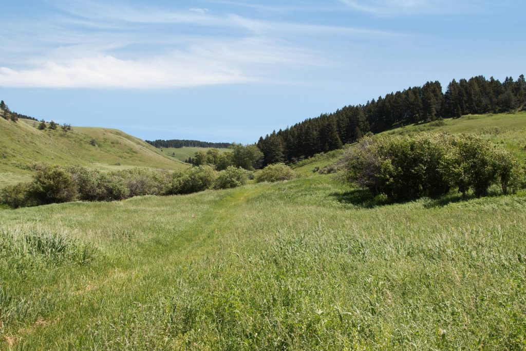 Mile High Ranch 04