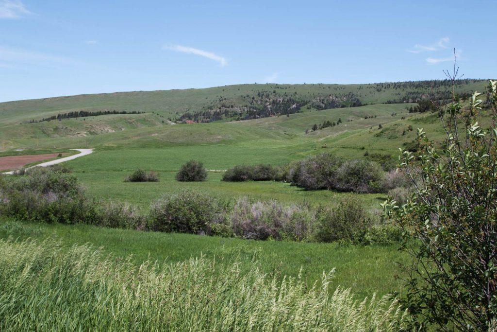 Mile High Ranch 05