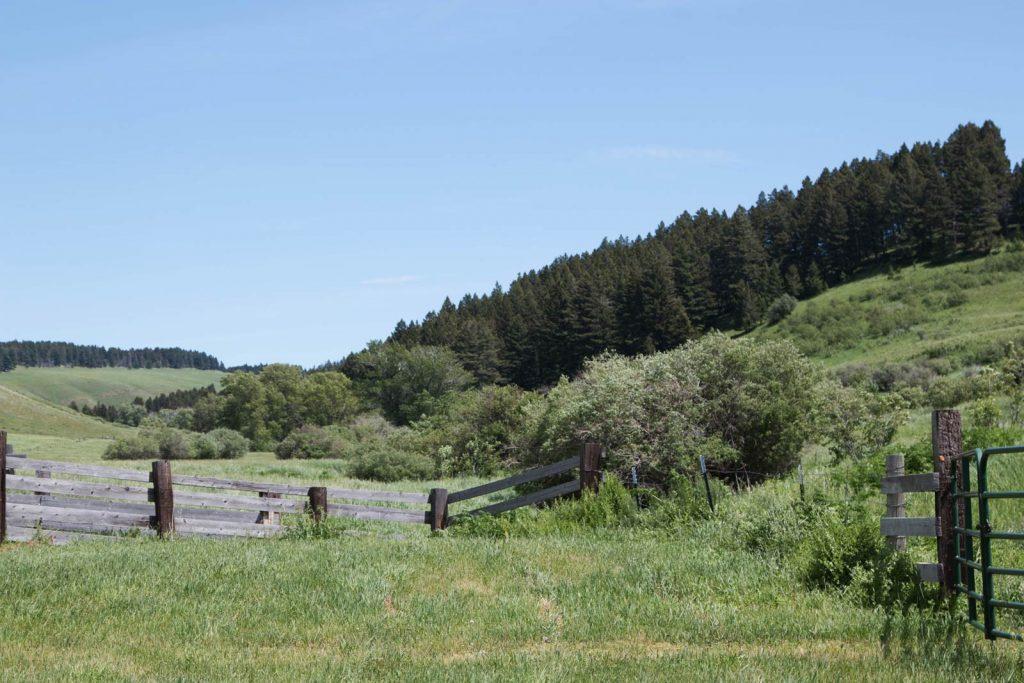 Mile High Ranch 08