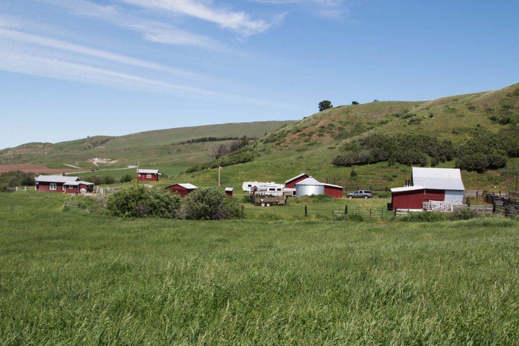 Mile High Ranch 09
