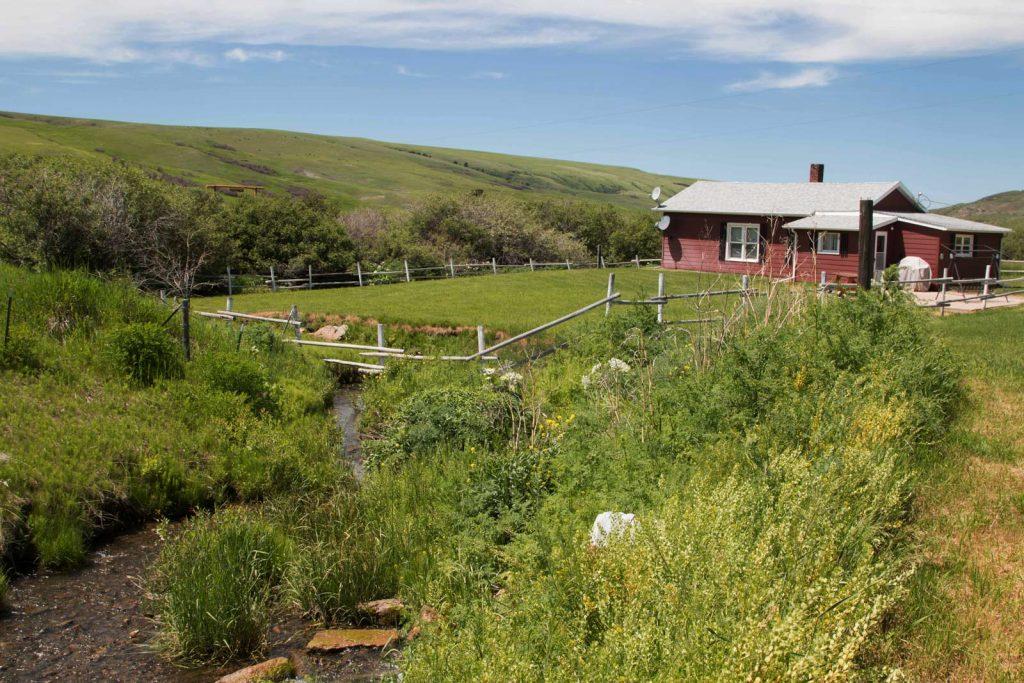 Mile High Ranch 14