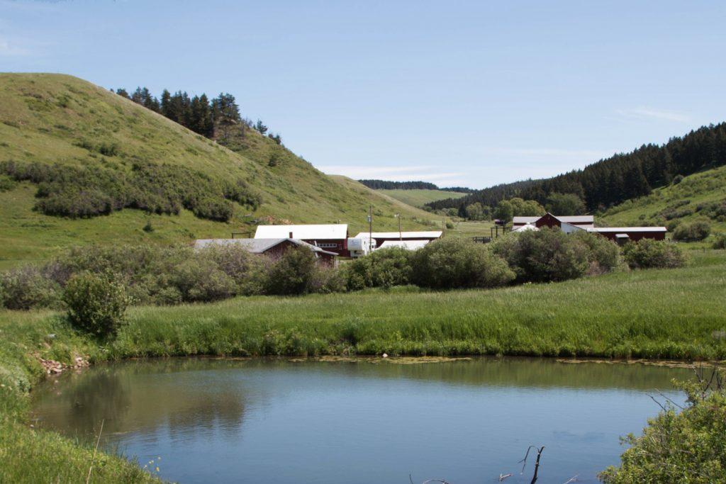 Mile High Ranch 16