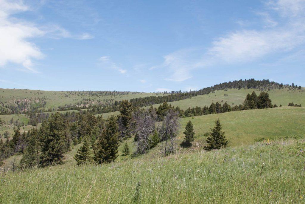 Mile High Ranch 24