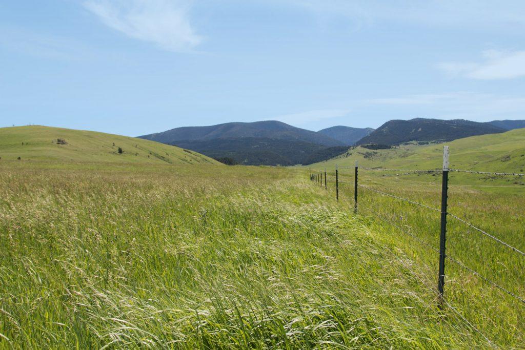 Mile High Ranch 25