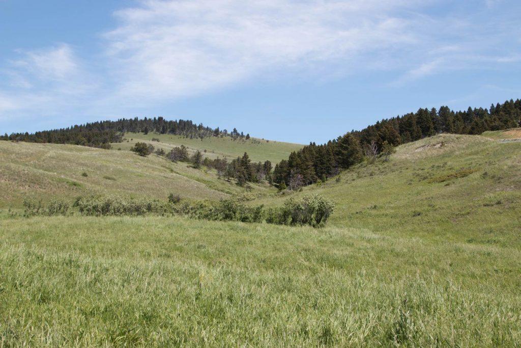 Mile High Ranch 26