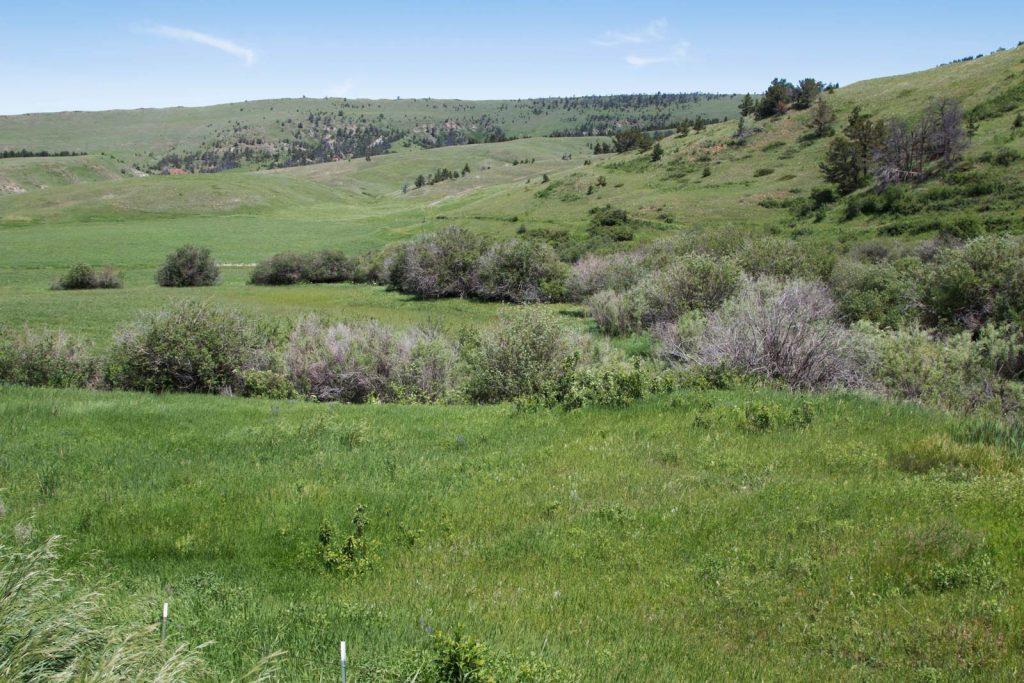 Mile High Ranch 28