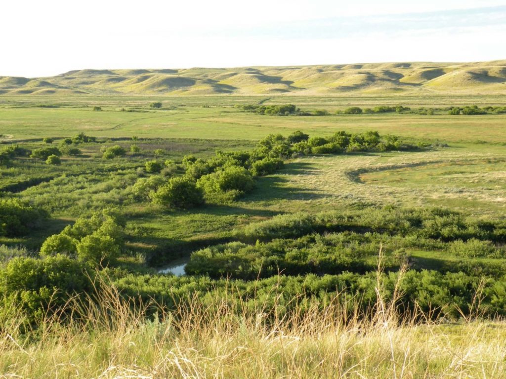 Teigen Ranch 03