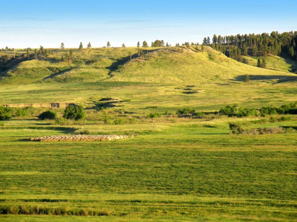 Teigen Ranch 08