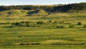 Teigen Ranch 09