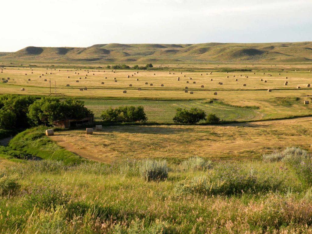 Teigen Ranch 14