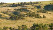 Teigen Ranch 15