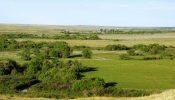 Teigen Ranch 19
