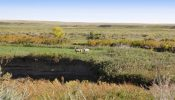 Teigen Ranch 24
