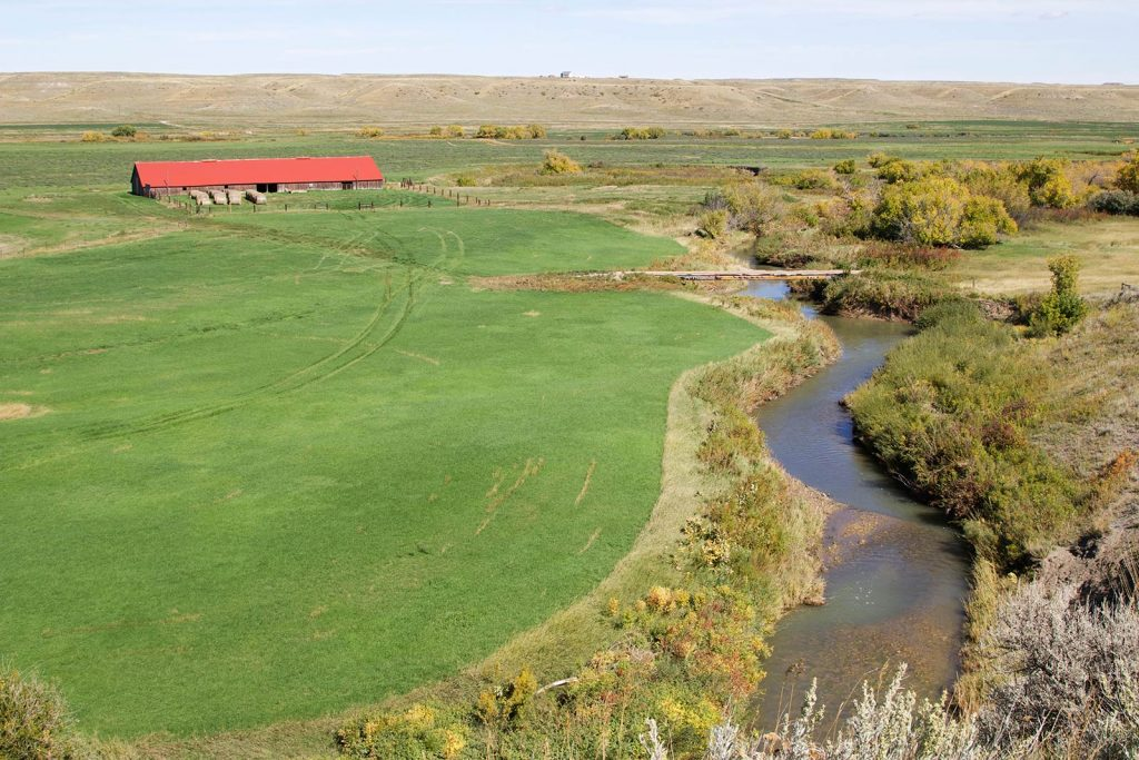 Teigen Ranch 28