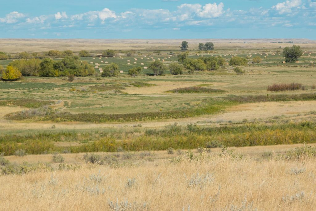 Teigen Ranch East 17