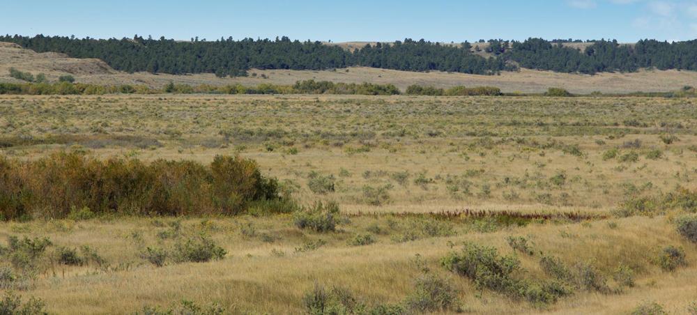 Teigen Ranch East Feature