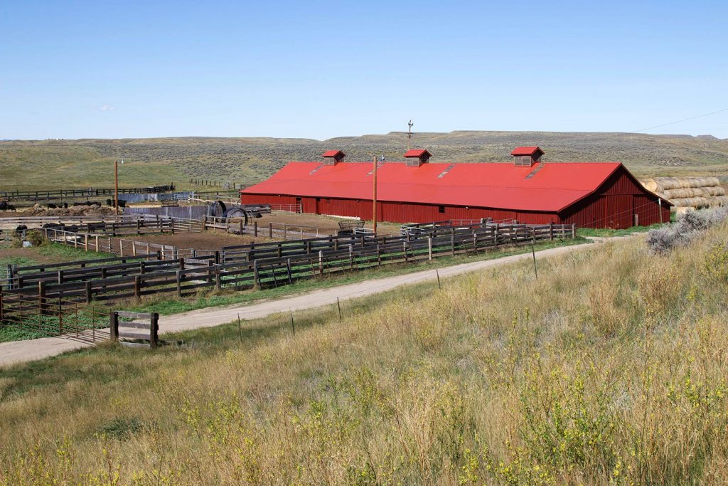 Teigen Ranch West 08