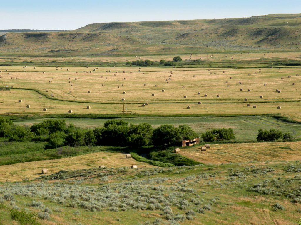 Teigen Ranch West 13