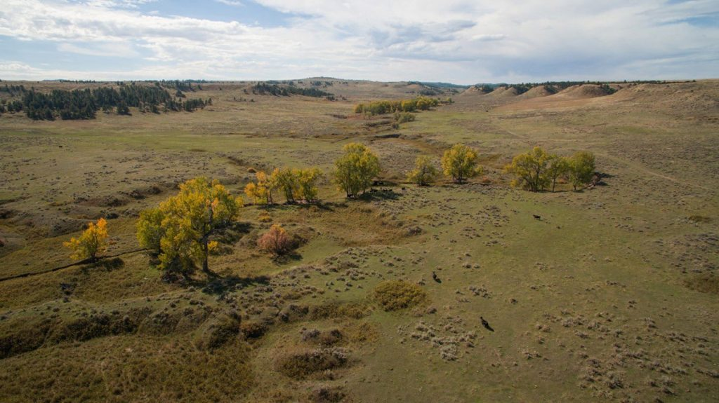Teigen Ranch West 18