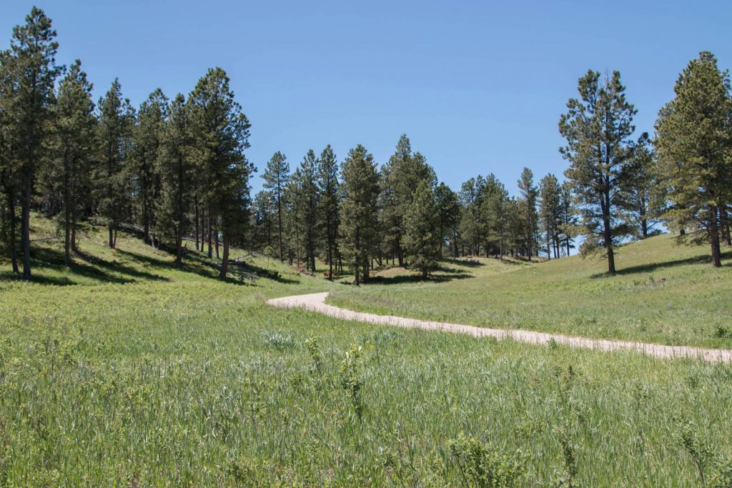 White Pine Ranch 02