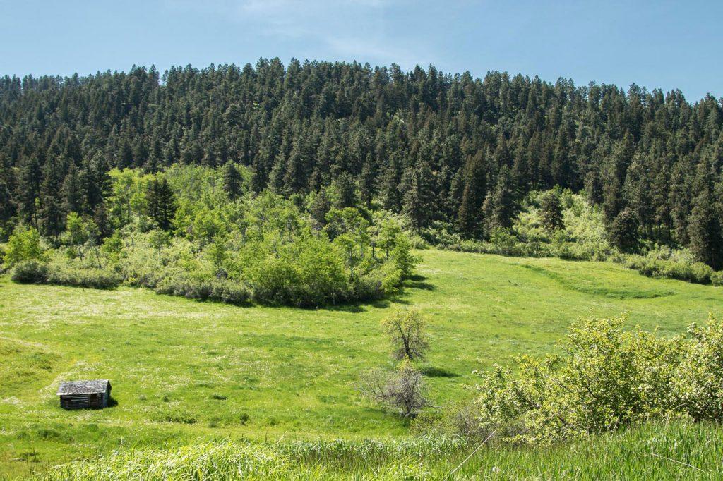 Snowy-Mountain-Trophy-Ranch-16