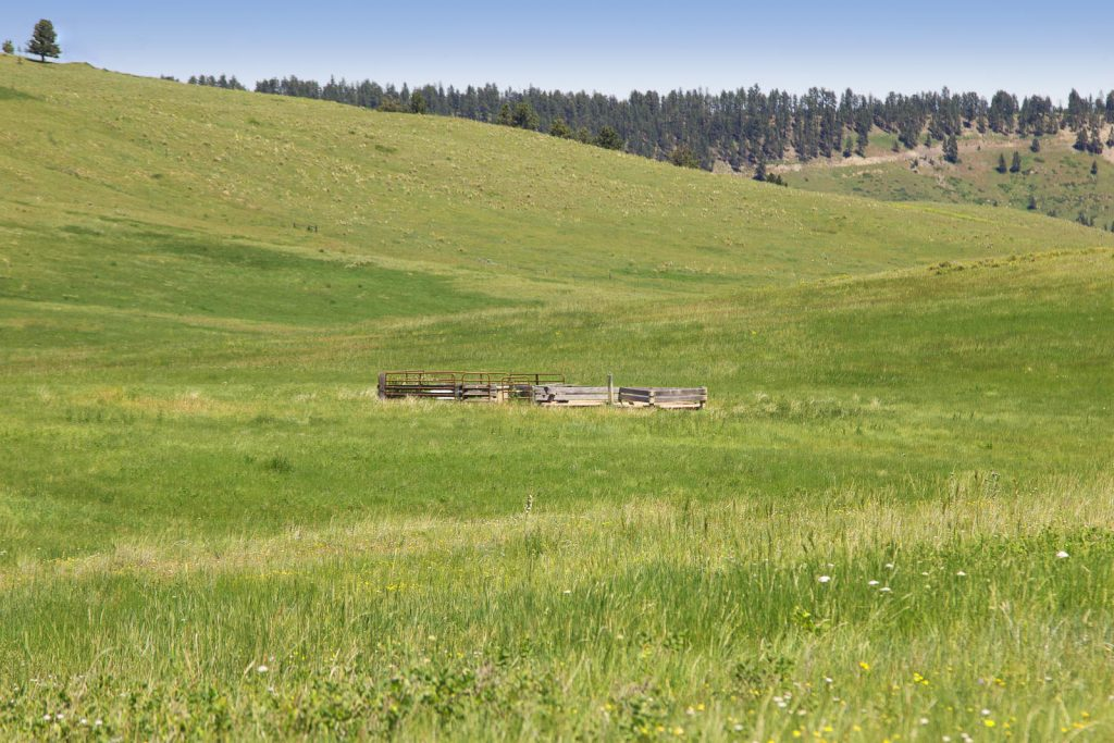 Forest Grove Ranch 15