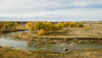 Musselshell-River-Property-Feature