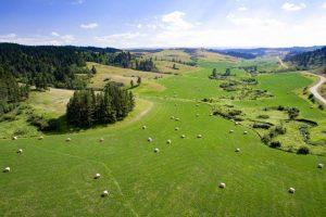Castle Creek Ranch 04