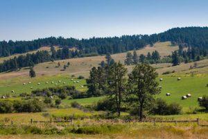 Castle Creek Ranch 06