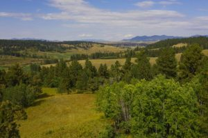 Castle Creek Ranch 07