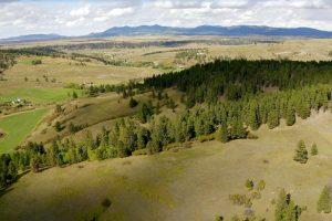 Castle Creek Ranch 14