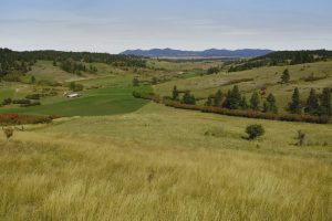 Castle Creek Ranch 18