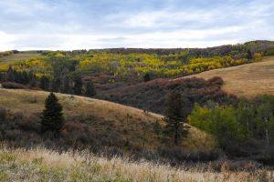 Castle Creek Ranch 21