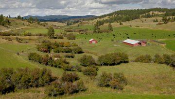 Castle-Creek-Ranch-Feature2020