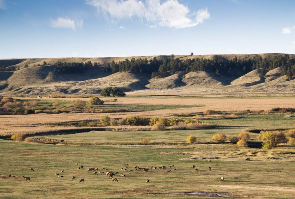 Paradise Coulee Ranch 01