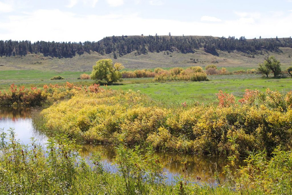 Paradise Coulee Ranch 02