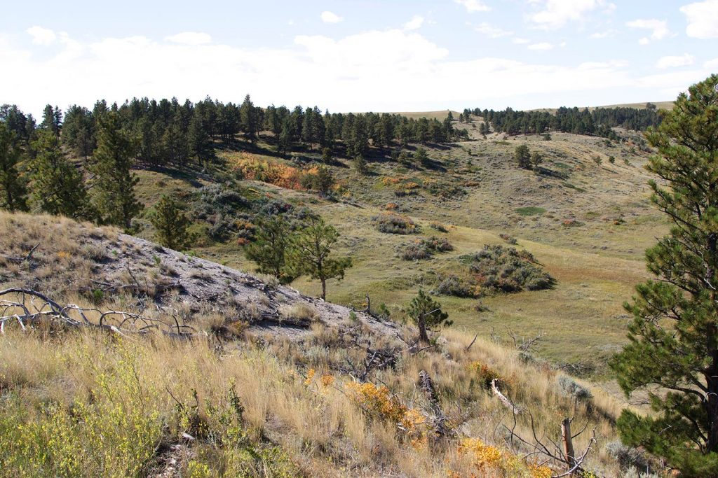 Paradise Coulee Ranch 03