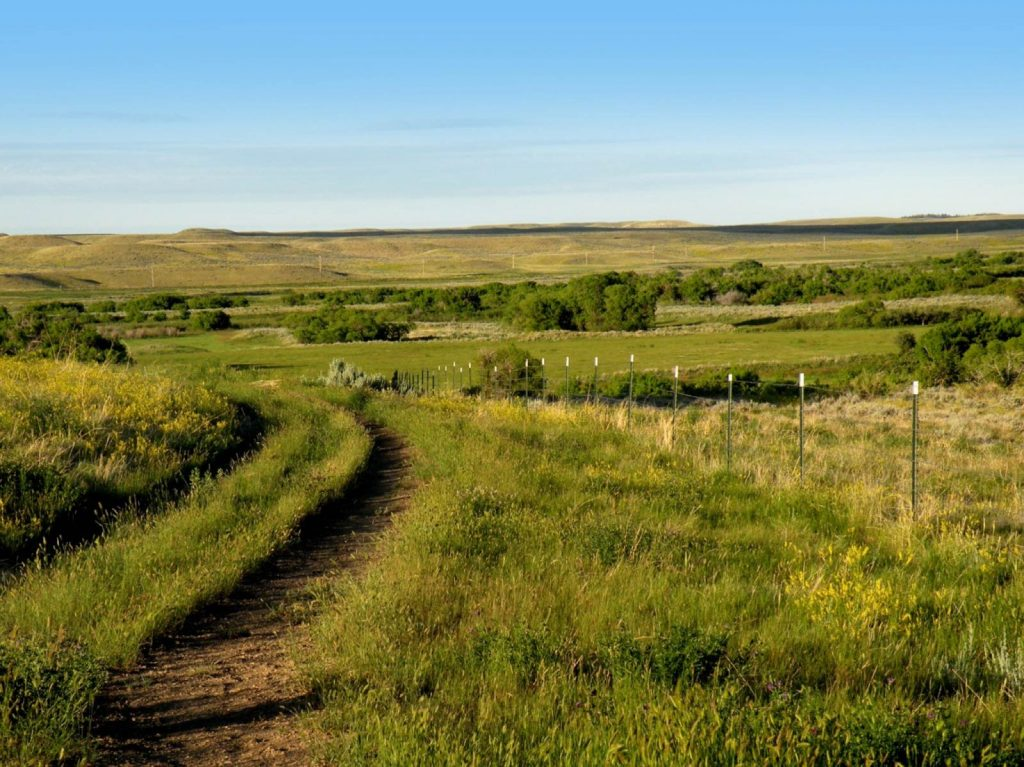 Paradise Coulee Ranch 07