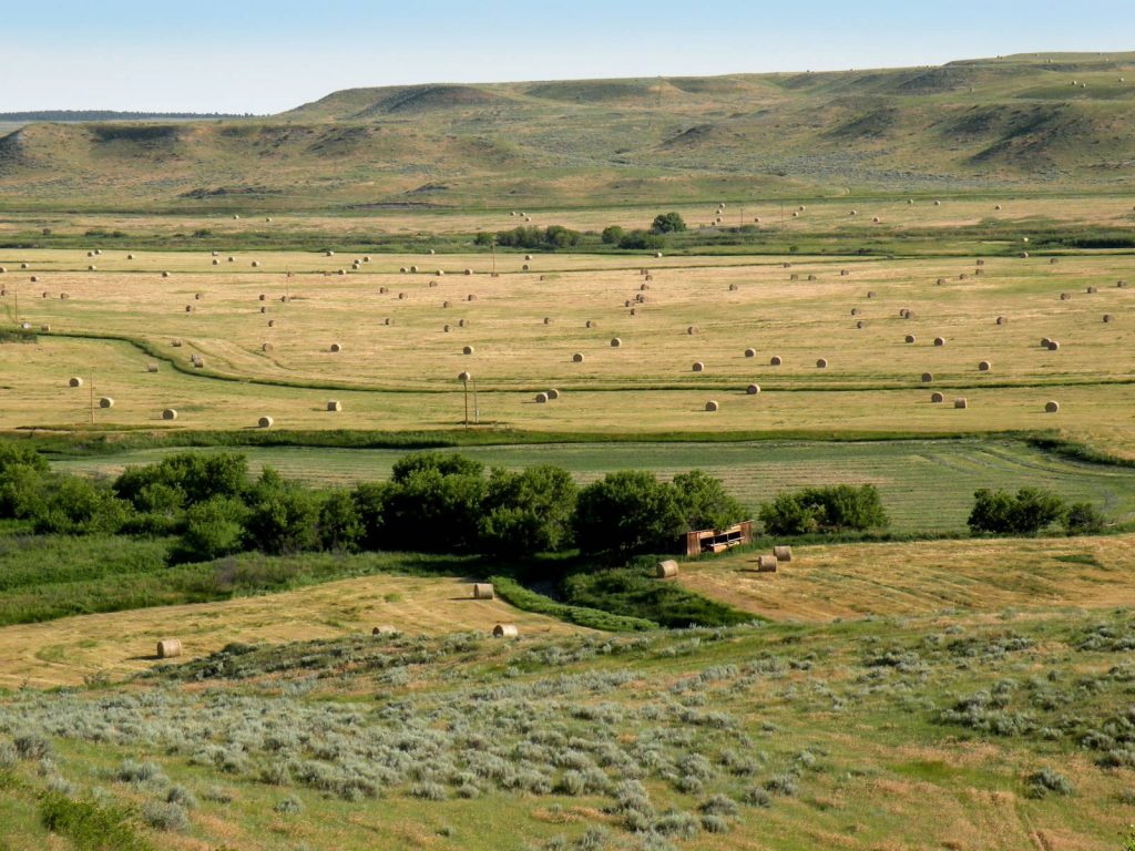 Paradise Coulee Ranch 10