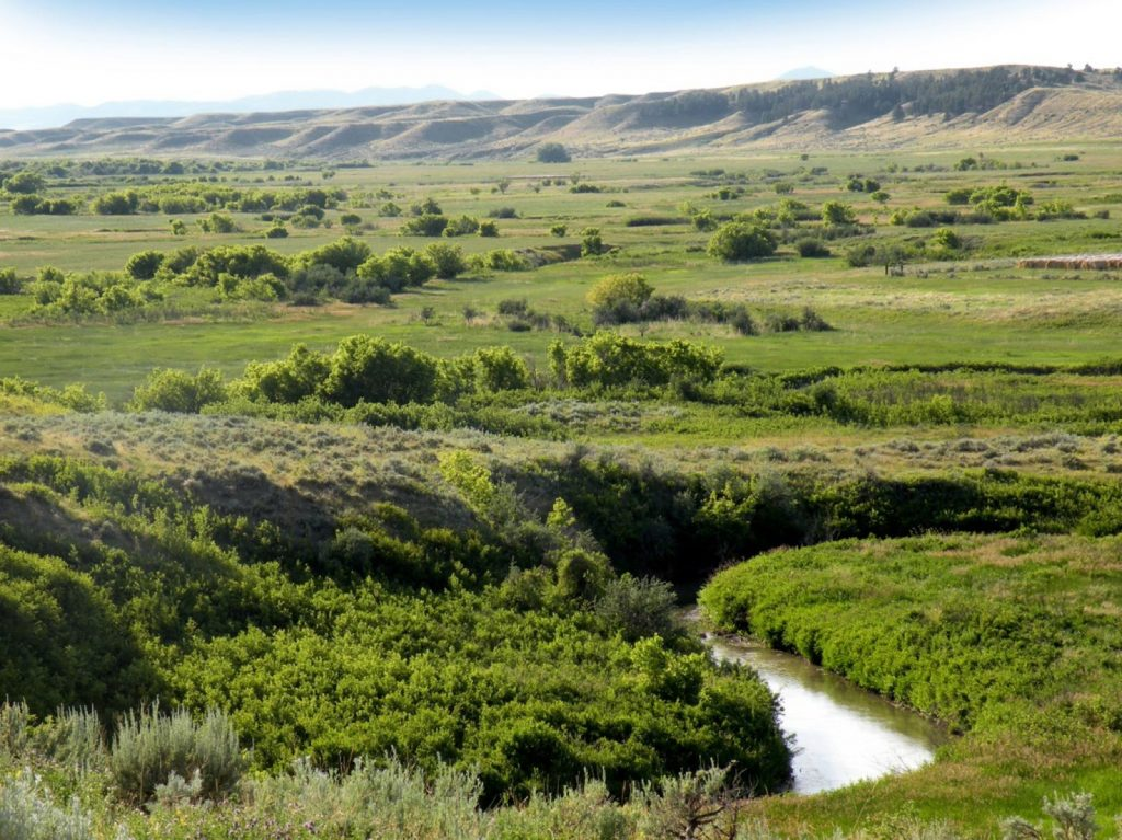 Paradise Coulee Ranch 11