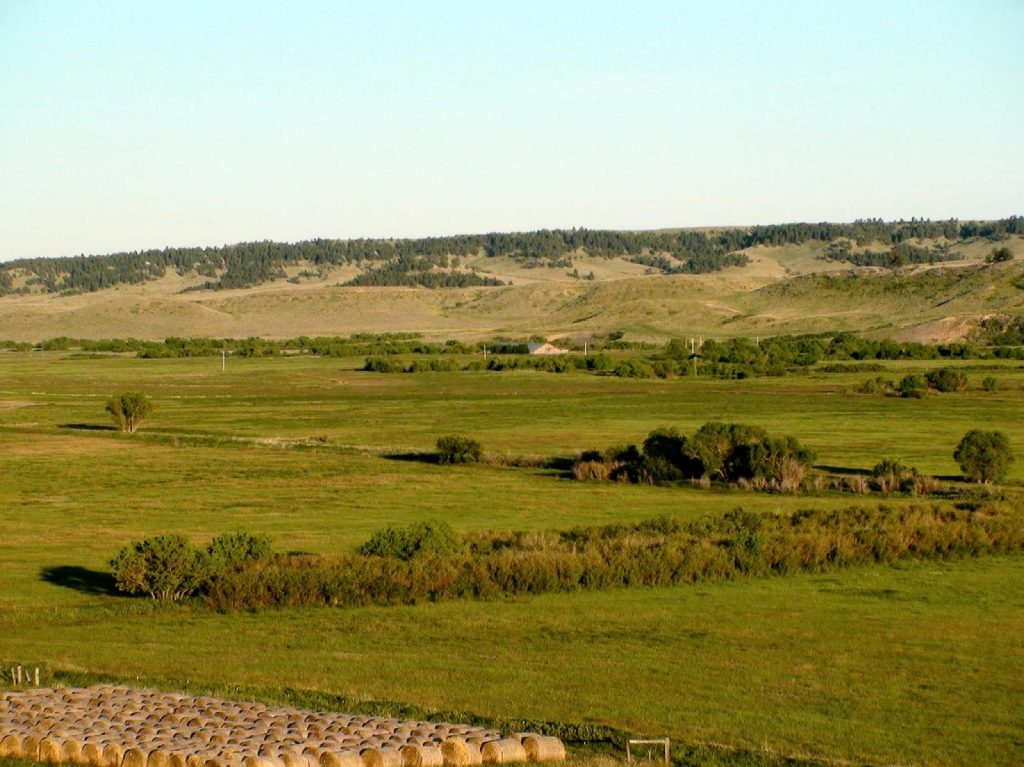 Paradise Coulee Ranch 12