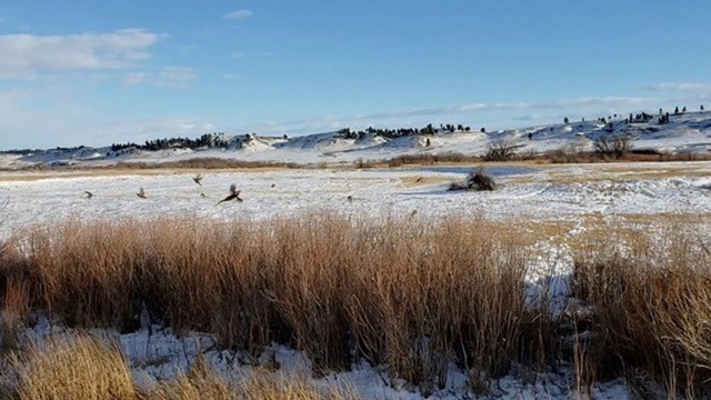 Paradise-Coulee-Ranch-18