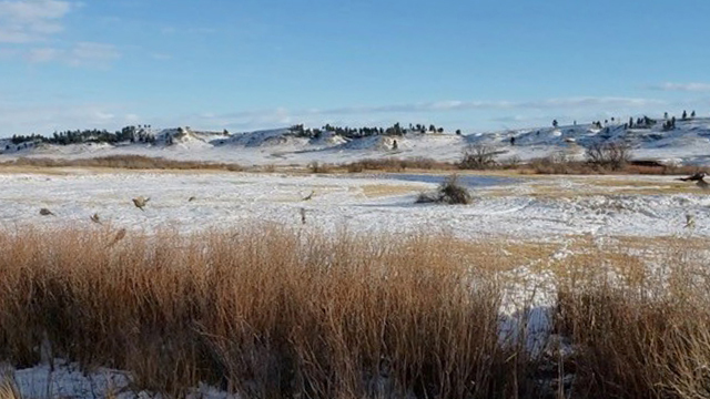 Paradise-Coulee-Ranch-19
