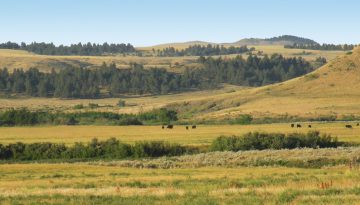 Paradise-Coulee-Ranch-Feature