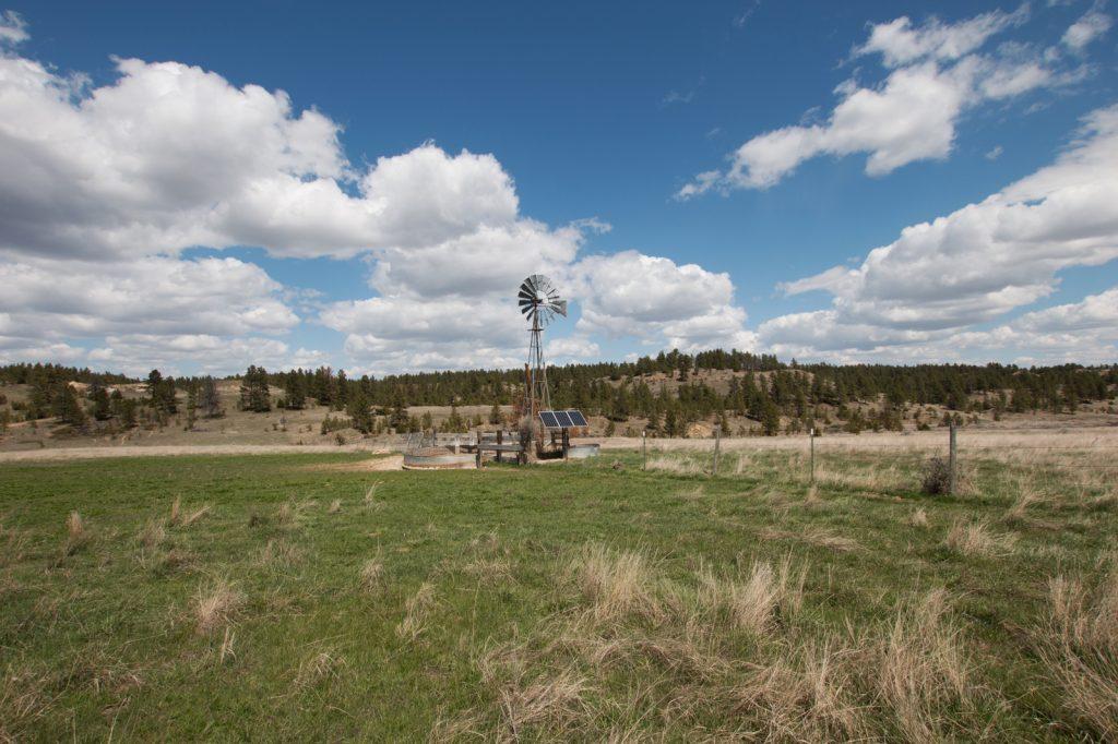 Volborg-Trophy-Ranch-03