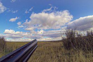BBR Hunting 01